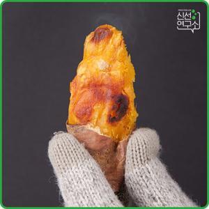 [신선연구소] 해남 꿀고구마 5kg 특상(120~300g)