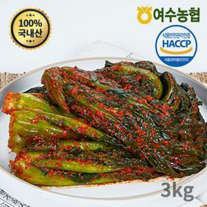 [여수농협] 여수돌산 갓김치 3kg (국내산 100%)